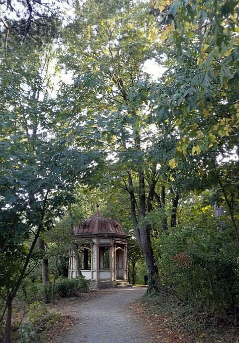 ウィーンの森の散歩道
